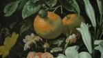 Teniers Jr (2)