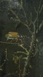 Teniers Jr (4)